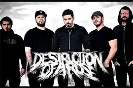 destructionofarose